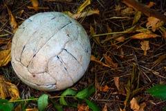 abandoned dirty football Stock Photo