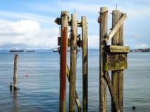 Abandoned dock pilings Astoria Oregon stock images