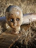 Abandoned Doll. Close up of the head of old abandoned doll Stock Image