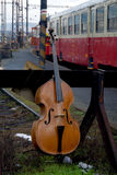 Abandoned the double bass. Stock Photography