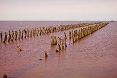 Abandoned fördärvade tillträdesbrädet i salina Royaltyfri Bild