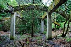 Abandoned fördärvar av gammal fabrik Royaltyfri Foto