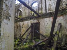 Abandoned fördärvar av historiskt villahus i tropisk skog på den fotvandra slingan för vandringsledet nära Furnas, den SaoMiguel  arkivfoto