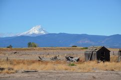 Abandoned Farm in Central Oregon with Mt. Hood. This is an abandoned farm in Central Oregon with Mt. Hood in the background stock photos