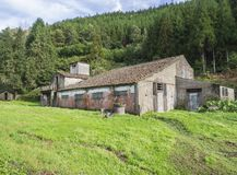 Abandoned farm house building in the middle of green forest, Sao Miguel, Azores, Portugal. Sunny day stock photos