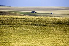 Abandoned Farm Saskatchewan Royalty Free Stock Photo
