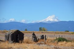 Abandoned Farm Shed with Mt. Hood, Central Oregon. This is an abandoned farm shed in Central Oregon with Mt. Hood in the background Royalty Free Stock Image