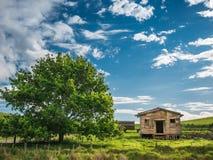 Abandoned Farm Shed Royalty Free Stock Photos
