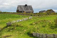 Abandoned farmhouse in Iceland in summer. Stock Photography