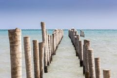 Abandoned Fishing Pier Seagulls Distant Horizon Caribbean Sea Caye Caulker Belize royalty free stock image