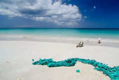 Abandoned fishnet at Ffryes beach - 3 Royalty Free Stock Photography