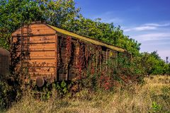 Abandoned freight wagon Royalty Free Stock Images