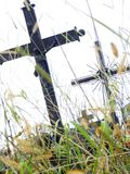 Abandoned grave. In the cementary Royalty Free Stock Image