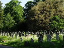 Abandoned gravestones at the Brompton Cemetery London. Weathered and abandoned gravestones from the 19th century at Brompton Cemetery in London, UK. Covered by stock images