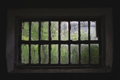 Window at summer, in the broken greenhouse stock images