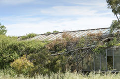 Abandoned greenhouse Royalty Free Stock Images