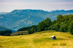 Abandoned herdsman shed on hillside near forest. Lovely summer nature scenery in Carpathian mountains Royalty Free Stock Image