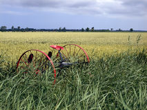 Abandoned historical agricultural machinery Royalty Free Stock Photo