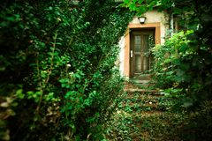 Abandoned home with overgrown path leading to front door royalty free stock image