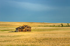 Abandoned homestead. Old homestead on the prairie Royalty Free Stock Photos