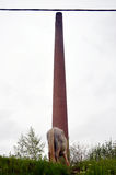 Abandoned horse grazing against factory chimney Royalty Free Stock Photos