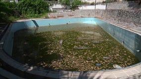 Abandoned hotel. In Nea Skioni, Kassandra peninsula, Chalkidiki, Greece stock video