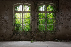 Free Abandoned House Royalty Free Stock Photos - 50030108