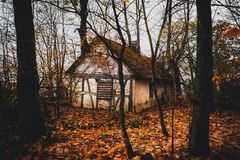 Abandoned house in autumn colored forest.  stock photos