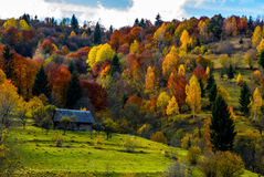 Abandoned house in autumn forest on hillside. Abandoned wooden house in shade of a cloud in autumn forest. beautiful rural scenery in mountains Stock Images
