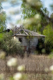 Abandoned house in the exclusion zone of the Chernobyl NPP. Royalty Free Stock Photos