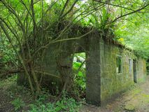 Abandoned house in the forest royalty free stock photography