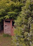 Old abandoned house in serbian village. Southeast of Serbia. Abandoned wooden house in the forest stock image