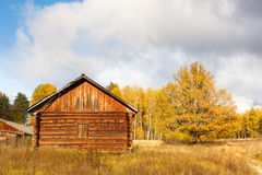 Abandoned house from forest Royalty Free Stock Image