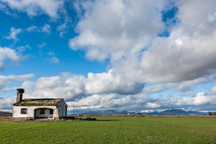 Abandoned house in green field of grass and cloudy sky Stock Image