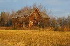 Abandoned house by a harvested field at dawn Stock Image