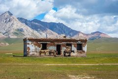 Abandoned house with horses, Song Kul. Abandoned house and horses standing in front against the mountain landscape, Song Kul, Kyrgyzstan Stock Photo