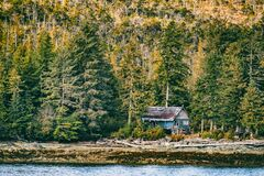 Free Abandoned House In The Forest Wilderness - Alaska Landscape Background Royalty Free Stock Photo - 195222665