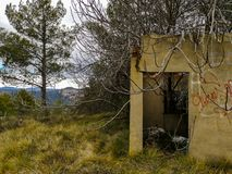 Abandoned house invaded by nature stock photography
