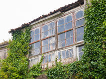 Abandoned house invaded by nature Royalty Free Stock Image