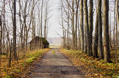 Abandoned house near gravel road and autumn trees. Stock Images