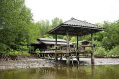 Abandoned house and old outdoor pavilion at riverside of riverba Royalty Free Stock Photos