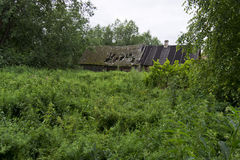 Abandoned house. Overgrown garden and abandoned dilapidated house Royalty Free Stock Photo