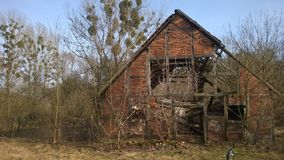 Abandoned house in small forest stock photography