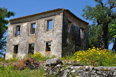 Abandoned house and spring landscape Stock Image
