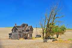 Abandoned house and tree Stock Images
