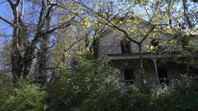 Abandoned House in the Woods stock video