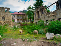 Abandoned houses. In the community Latali , Svaneti, Georgia Royalty Free Stock Images