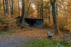 Abandoned hut in autumn forest Stock Photo