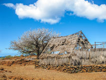 Abandoned Hut Royalty Free Stock Photos