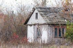 Abandoned hut among trees and bushes Stock Photos